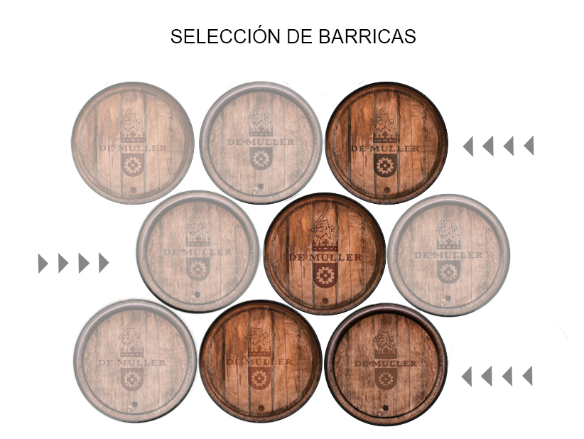 Seleccion Barricas Licor Demuller